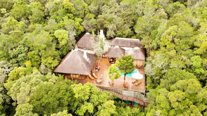 Garden Route Accommodation at Trogon House and Forest Spa | TravelGround