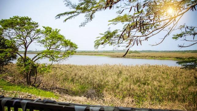 at Nsezi Lake Cottages   TravelGround
