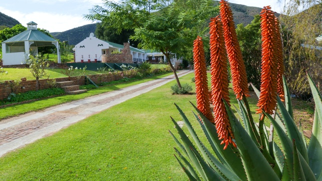 at De Oude Meul Self-catering Country Lodge | TravelGround