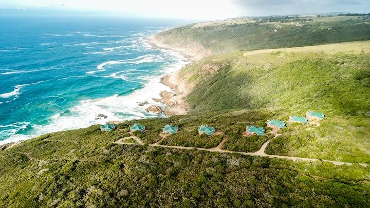 at Blue Whale Resort   TravelGround