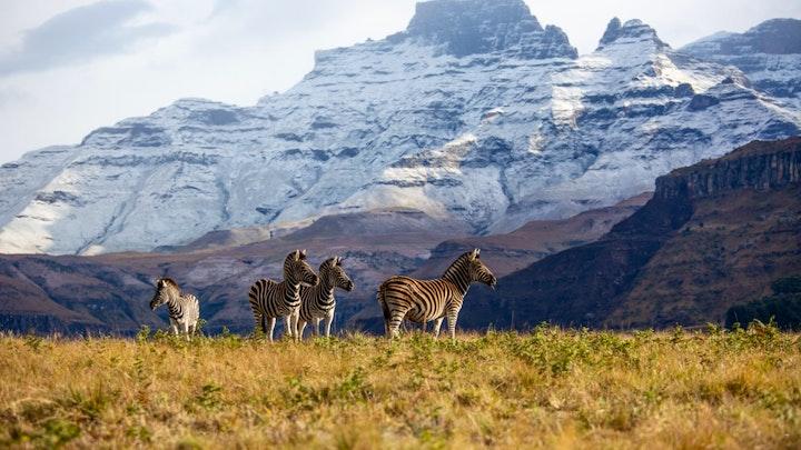 at Drakensberg House | TravelGround