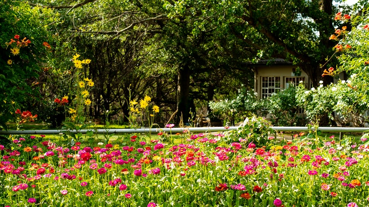 at Wetlands Country House & Sheds | TravelGround