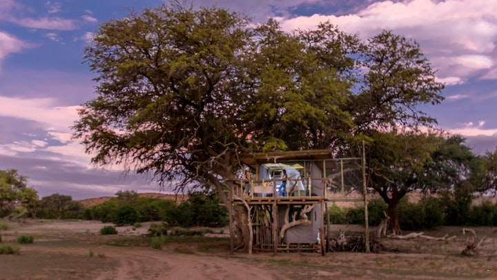 at Tree House | TravelGround