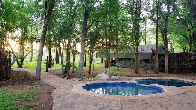 at Selati Safari Lodge | TravelGround