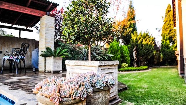 by Lavender Lane Guesthouse | LekkeSlaap