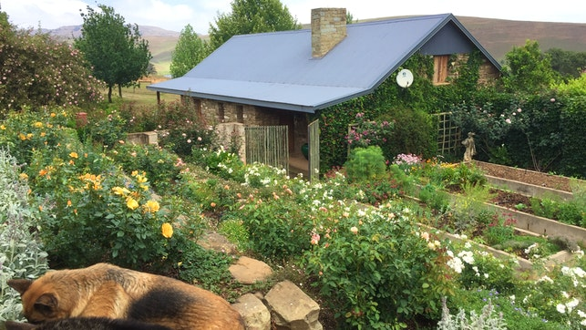 at Sandstone Cottage Guest Accommodation   TravelGround