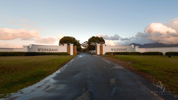 at Endless Vineyards at Wildekrans Wine Estate | TravelGround