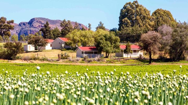 at Hazenjacht Karoo Lifestyle | TravelGround