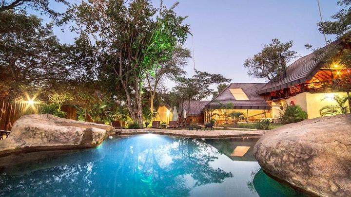 at Pezulu Tree House Game Lodge | TravelGround