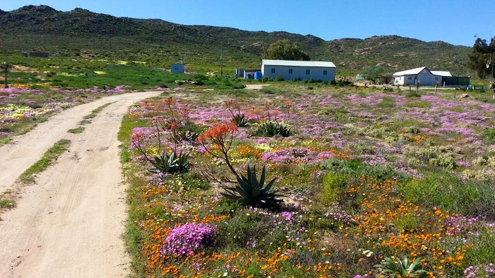 at Middelkraal Accommodation | TravelGround