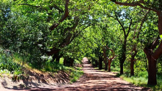 at Oak Lane Cottages | TravelGround