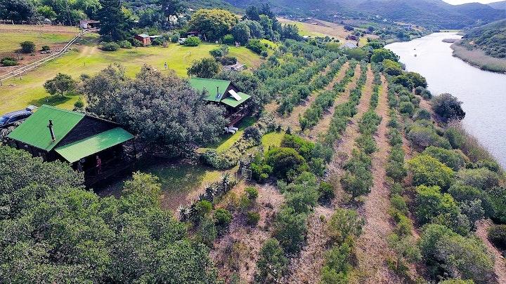 by Wild Olive Guest Farm | LekkeSlaap