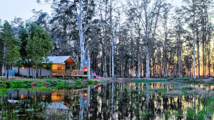 Wilderness Accommodation at AfriCamps at Oakhurst | TravelGround