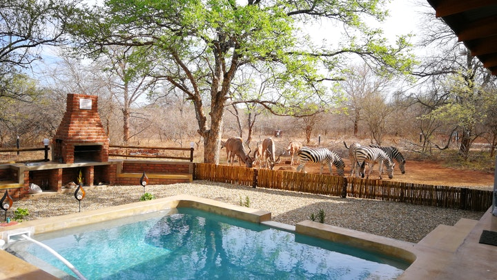 at Flight of the Eagle @ Kruger | TravelGround