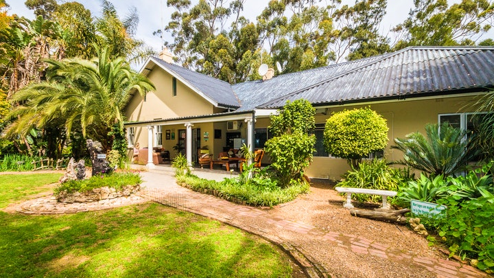 Addo Accommodation at Homestead B&B | TravelGround