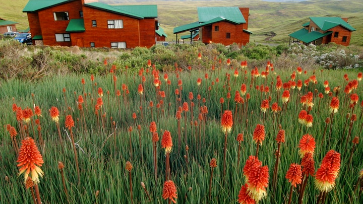 Eastern Cape Accommodation at Tiffindell | TravelGround