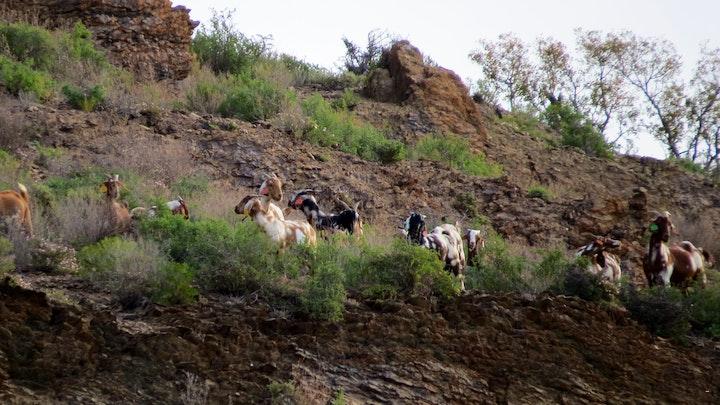 Klein-Karoo Akkommodasie by Miertjieskraal | LekkeSlaap