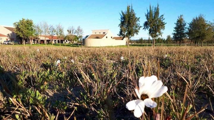 at 50 Shades of Hay | TravelGround