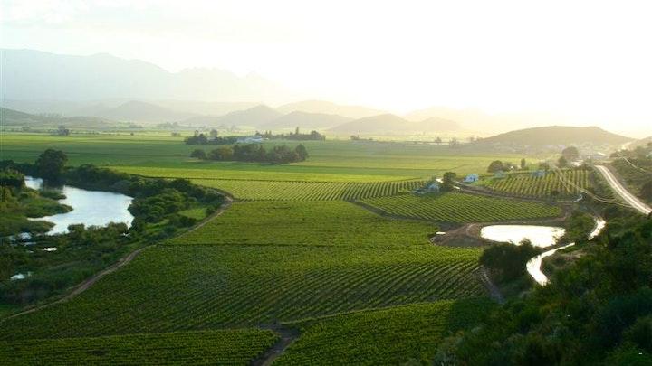 Bonnievale Akkommodasie by Weltevrede Wine Estate | LekkeSlaap