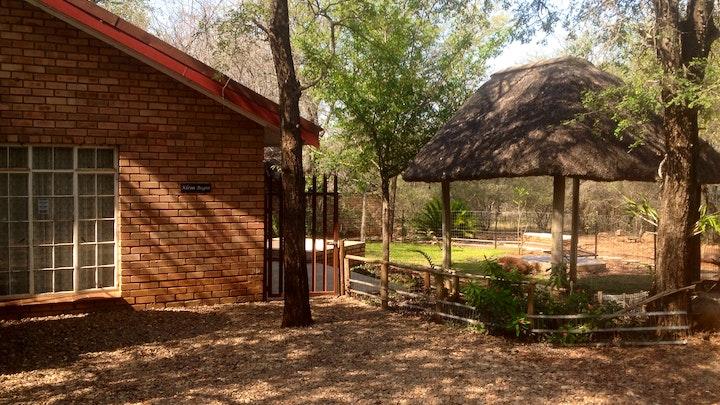 Marloth Park Accommodation at Kruger Sprokie vir 'n Stadskind | TravelGround