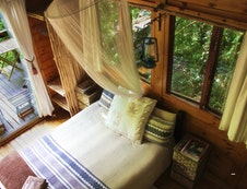 Forest Lodge Cabin