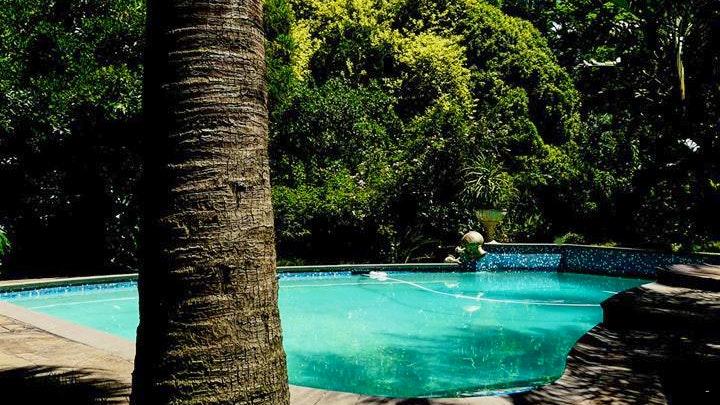 at Africa's Eden B&B | TravelGround