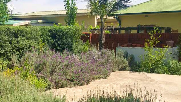 Newcastle Central Accommodation at Olive Manor Guest House | TravelGround