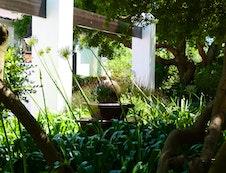 Beautiful Lodge garden