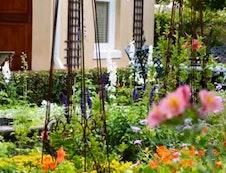 Family Suite Garden