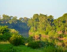 Great Letaba River