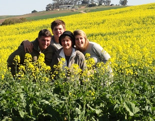 The Uyse in a Canola blooming Field