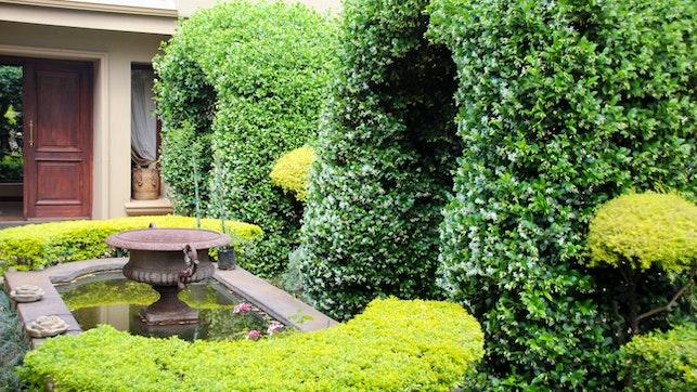 by Wild Fig Garden Apartments | LekkeSlaap