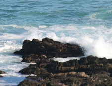 Sea Leisure activities include; rock and Surf fishing, surfing, game viewing, hiking, bird watching, swimming,...and more! iew