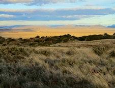 Karoo Veld Safari Park