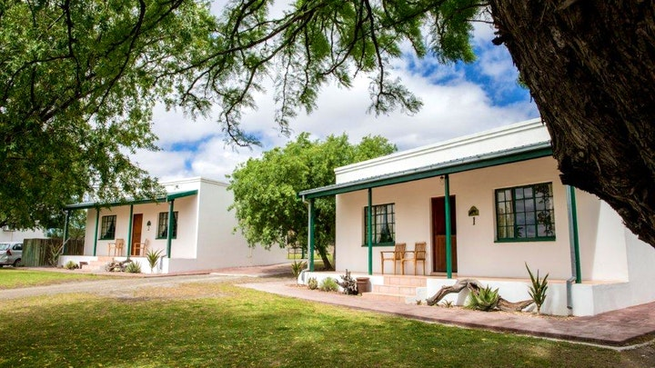 Beaufort West Accommodation at Olive Grove Guest Farm | TravelGround