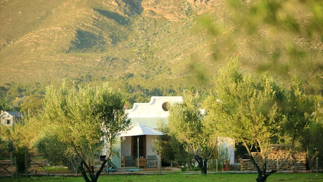 at Olive Stone Farm and Cottages | TravelGround