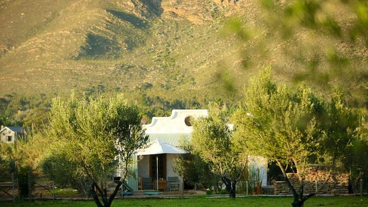 Montagu Accommodation at Olive Stone Farm and Cottages | TravelGround