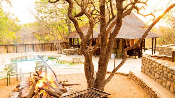Thornybush Game Reserve Accommodation at Buffaloland Safaris - Nyati Pools Camp   TravelGround