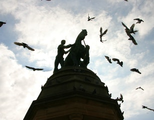 Birds and a war memorial