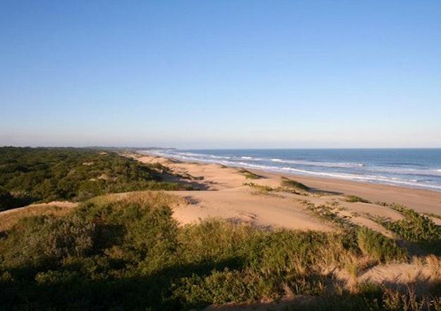 Mtunzini Beach (photo: Simon Fishley)