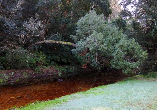 Jubilee Creek