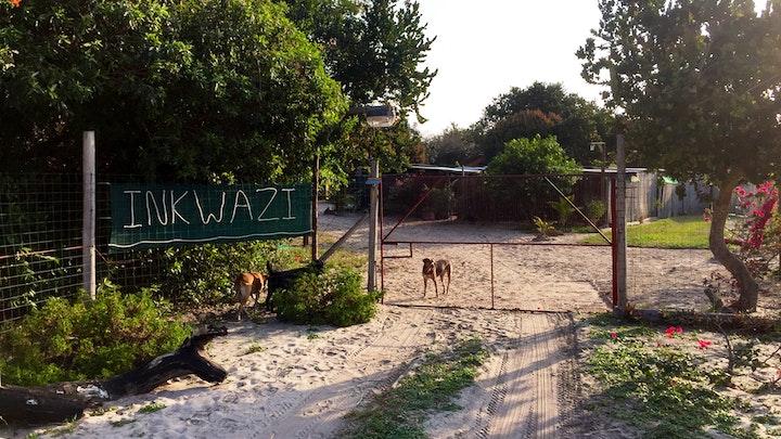 at Inkwazi Beach Camp | TravelGround