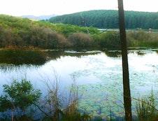 Stanford Lake - 2