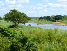 Crocodile River