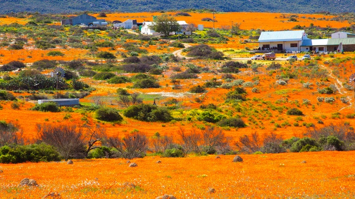 Namaqualand Accommodation at Skilpad Farm | TravelGround