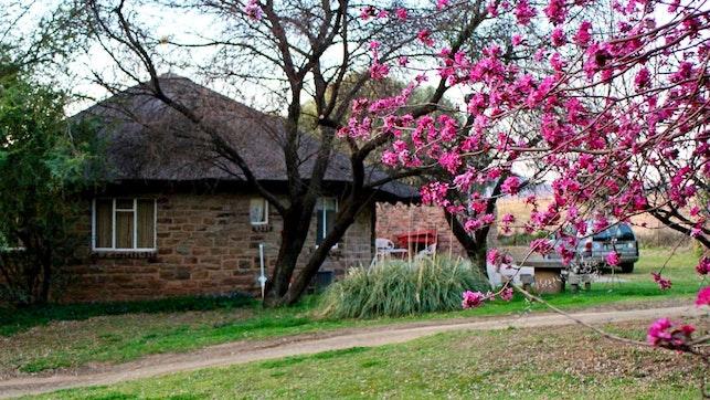 at Badfontein Guest Farm   TravelGround
