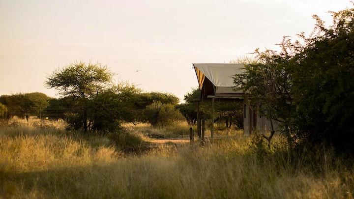 Dinokeng Accommodation at Ngata Safari Lodge | TravelGround