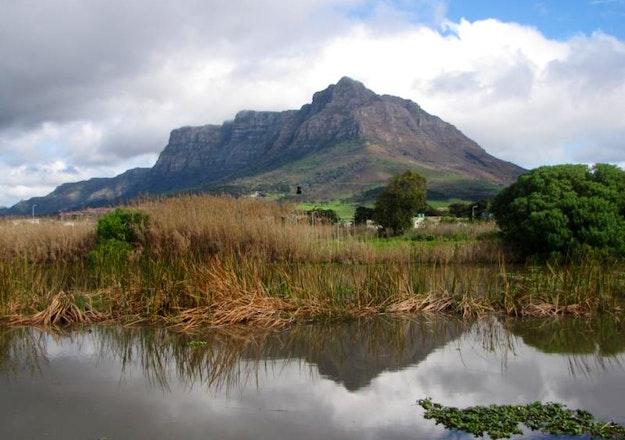 James_vincent_palloti_wetlands