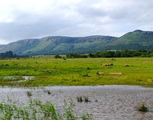 Magalies Mountain View