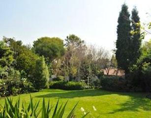 Tranquil & Relaxing Garden